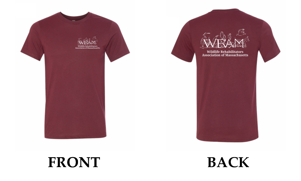 WRAM t-shirt click to see larger size